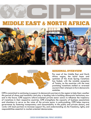 Flyer - Middle East & North Africa