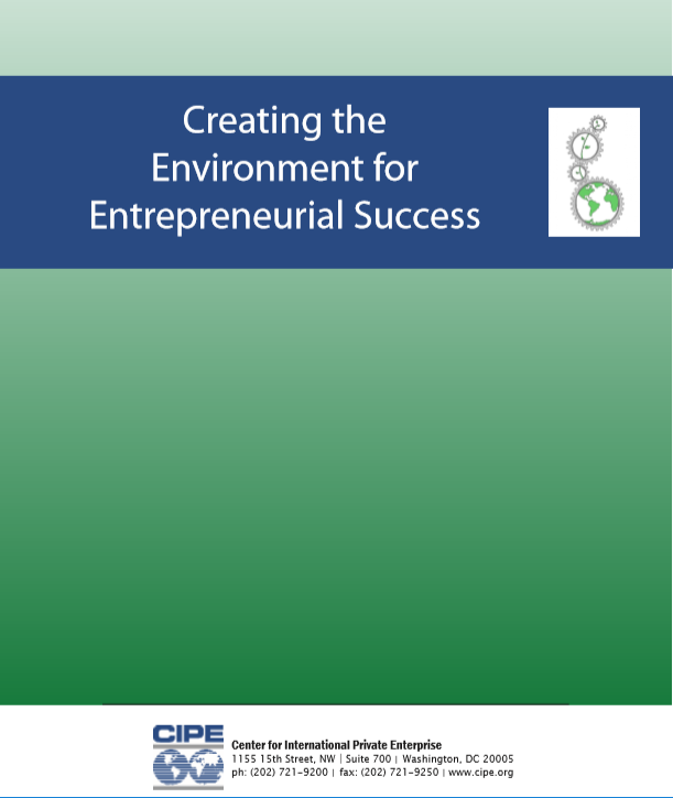 strategic issues in entrepreneurial ventures and small businesses